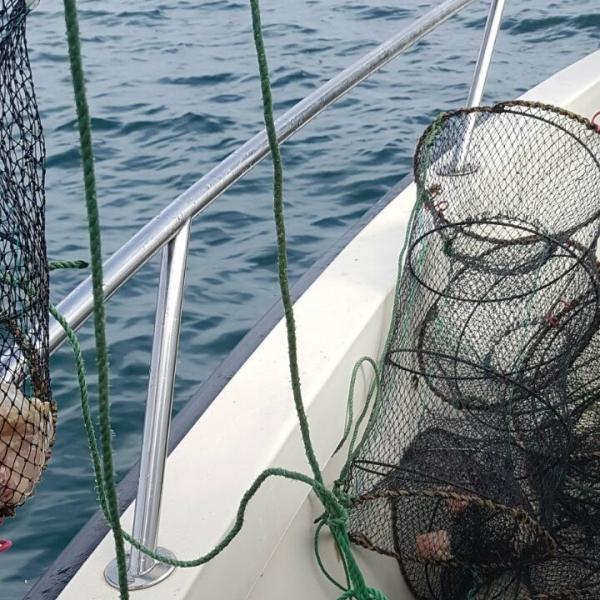 Cuşti de pescuit, descoperite în Marea Neagră