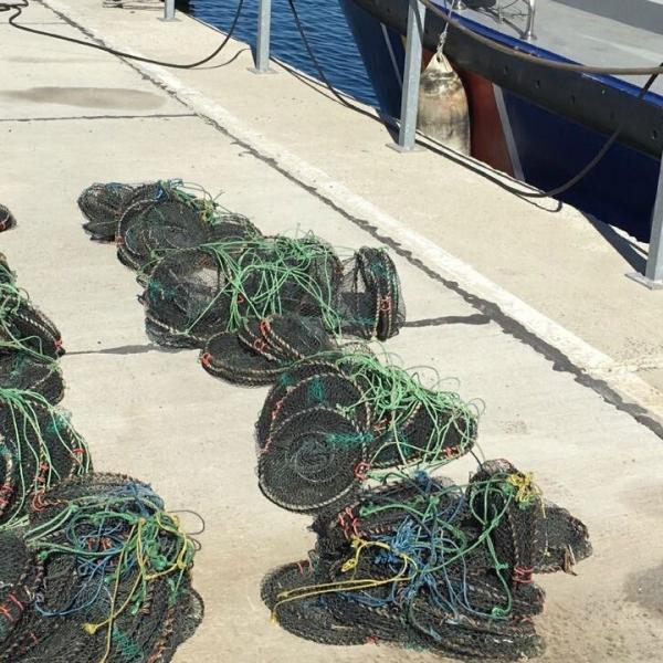 Unelte de pescuit interzise de lege, descoperite în Marea Neagră