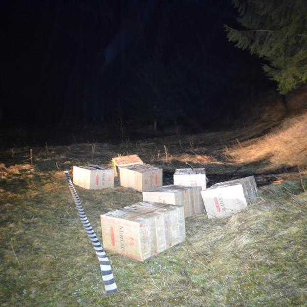 Aproximativ 18.000 pachete cu țigări confiscate în urma mai multor acțiuni pe linia combaterii contrabandei la frontiera de nord