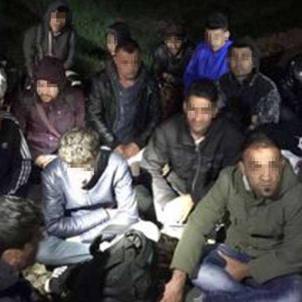 21 cetățeni din Iran și Irak care încercau să treacă ilegal frontiera, depistaţi de poliţiştii de frontieră de la S.P.F Borș