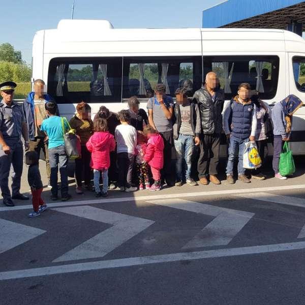 Şaptesprezece cetățeni străini, depistaţi într-un lan de porumb,lângă frontiera cu Ungaria
