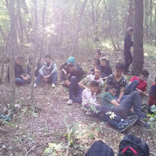25 de imigranți sirieni şi trei călăuze bulgare, depistaţi de poliţiştii de frontieră constănţeni