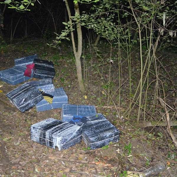 Aproximativ 13.000 pachete cu țigări de contrabandă, confiscate la frontiera de nord