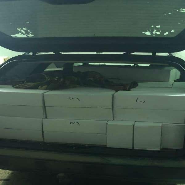 Sute de kilograme de prune uscate confiscate de poliţiştii de frontieră