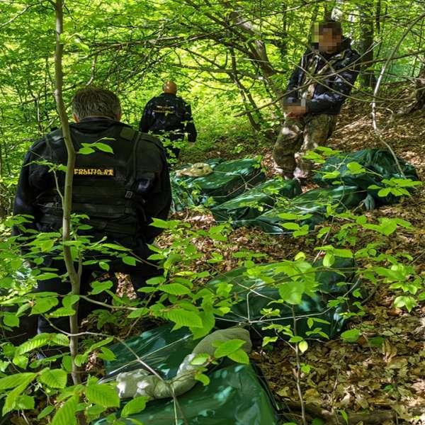 Aproximativ 40.000 de pachete cu țigări de contrabandă depistate la graniţa cu Ucraina