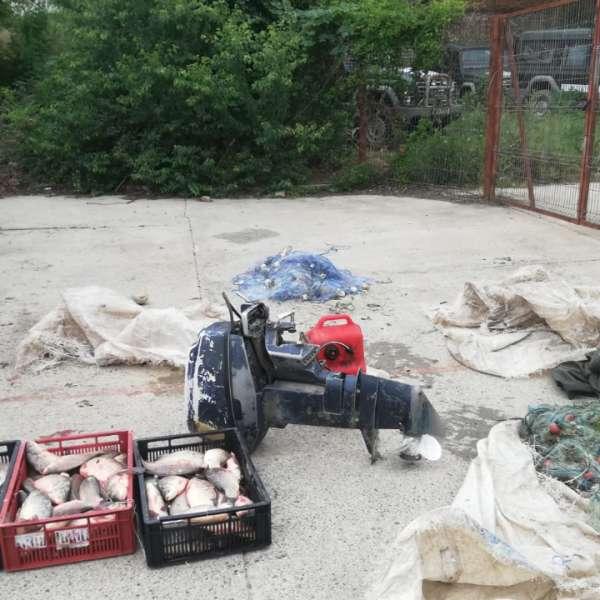 Aproximativ 140 kg peşte,confiscate de polițiștii de frontieră