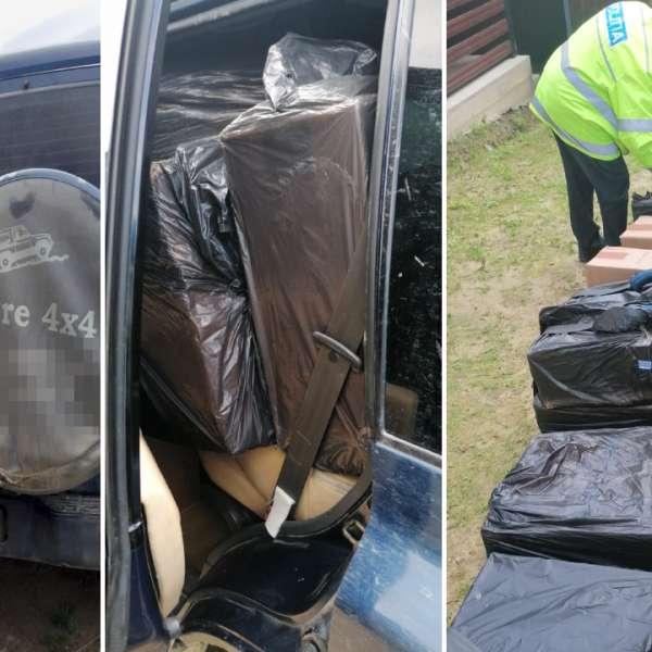 Grupuri infracţionale specializate în contrabandă cu ţigări,destructurate de poliţiştii de frontieră