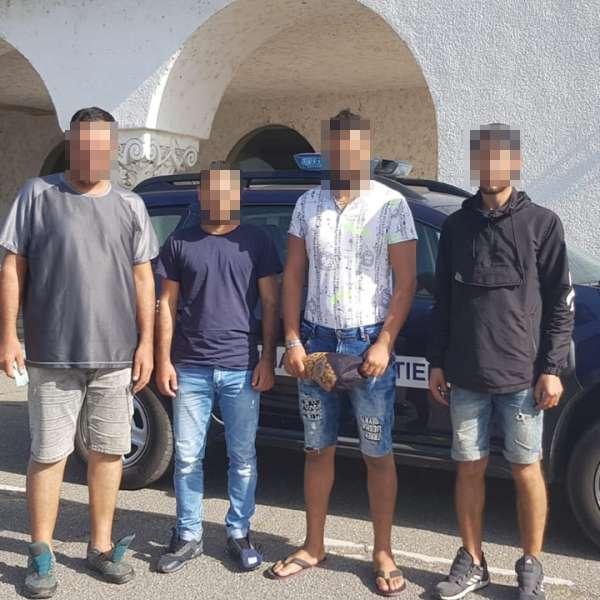 Patru cetăţeni din Siria, depistaţi în zona de competenţă a S.P.F. Borș