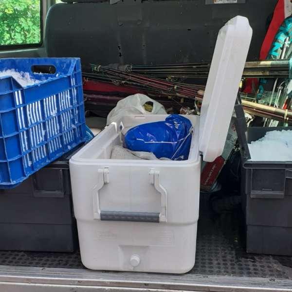 Peste 100 kilograme de  peşte transportate ilegal,   descoperite de poliţiştii de frontieră tulceni