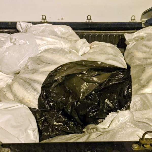 172 kilograme de peşte confiscate de poliţiştii de frontieră tulceni
