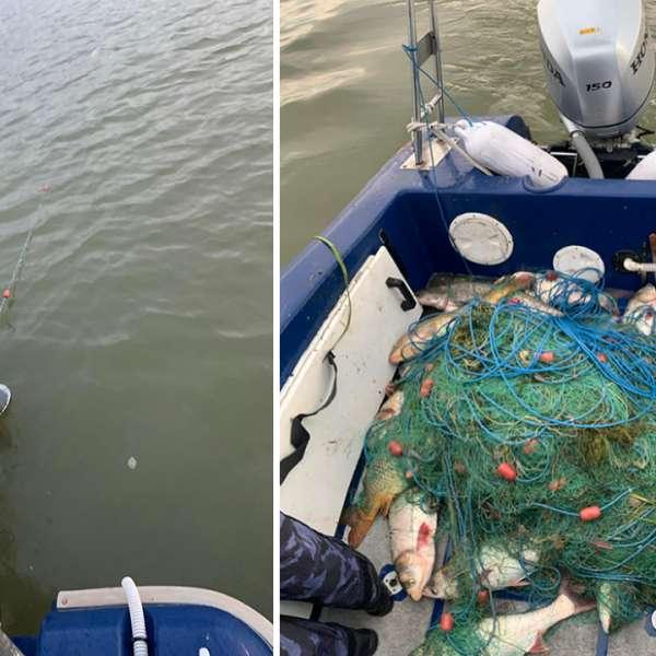 Braconaj piscicol în zona Rezervației Biosferei Delta Dunării