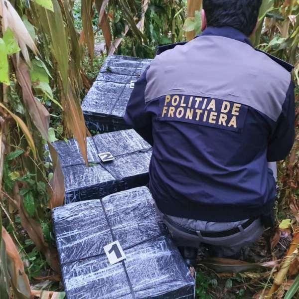 Ţigări de contrabandă în valoare de aproximativ 408.000 lei confiscate la frontiera de nord